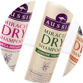 shampoo-ozzie